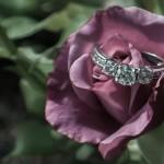 Diamond on rose