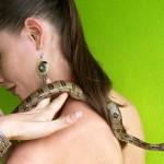 snake on Susan